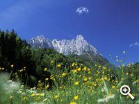 Unbegrenztes Bergerlebnis in Westendorf in den Kitzbühler Alpen